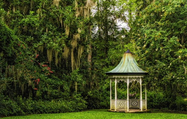 Picture trees, South Carolina, gazebo, Charleston, South Carolina, Magnolia Gardens, Charleston, Gardens magnolias