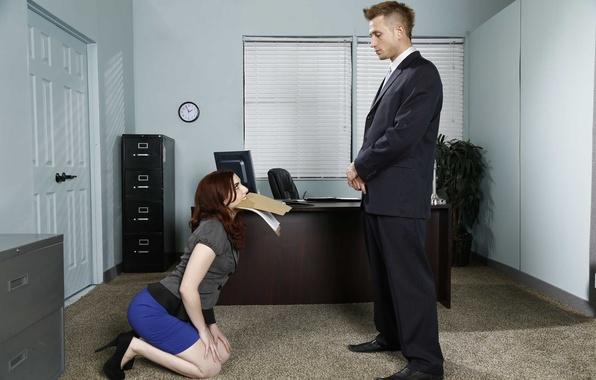 Picture girl, work, dog, guy, documents, boss, Secretary