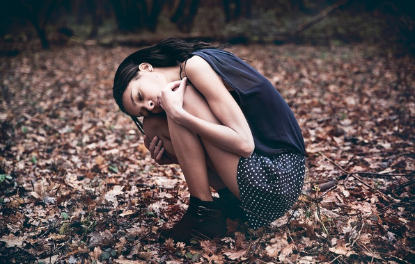 Picture autumn, forest, loneliness, Chloe