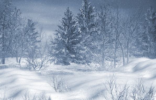 Picture winter, snow, trees, landscape, mountains, nature, house, forest