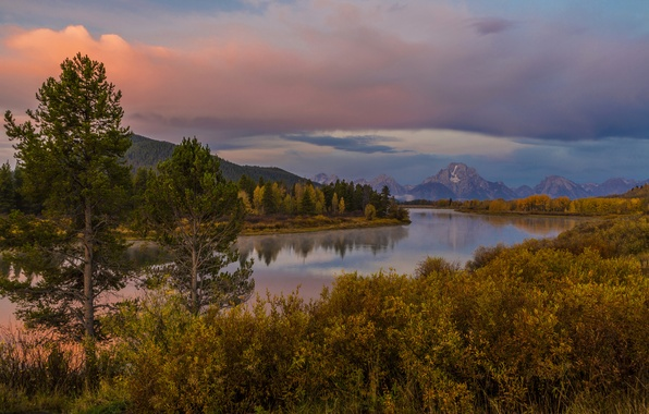 Picture autumn, forest, trees, sunset, mountains, river, shore, USA, Wyoming, the bushes, Grand Teton