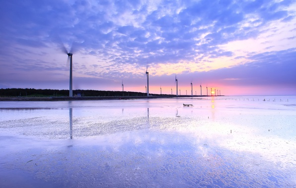Picture the sky, water, the sun, clouds, sunset, Strait, reflection, pink, shore, the evening, Taiwan, windmills, …