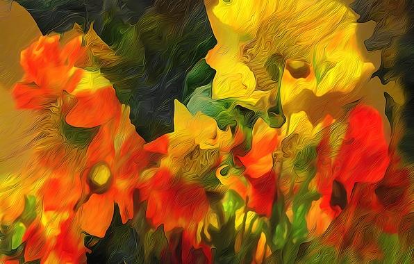 Picture line, flowers, rendering, paint, Maki, petals