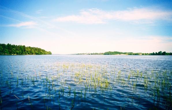 Picture the sky, nature, river, Russia, Volga
