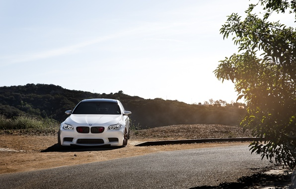 Picture road, white, bmw, BMW, turn, white, f10, tinted