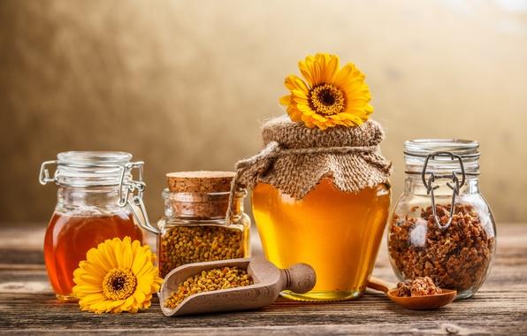 Picture flowers, yellow, honey, jars, spoon, banks, sweet, propolis