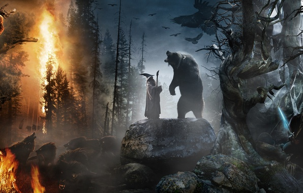 Picture forest, stones, animals, fire, fire, collage, sword, hat, bear, the Lord of the rings, wolves, …