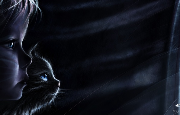 Picture cat, night, rain, the wind, mystery, window, shadows, escape