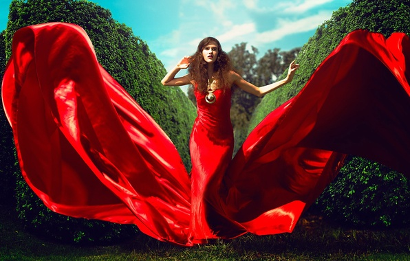 Picture GREENS, DRESS, FABRIC, RED, ALLEY, The BUSHES, SHATENQ, AL