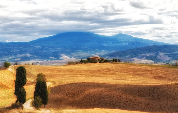 Picture the sky, clouds, hills, field, Italy, forest, Tuscany, marvelous landscape