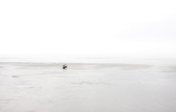 Picture sea, shore, toy