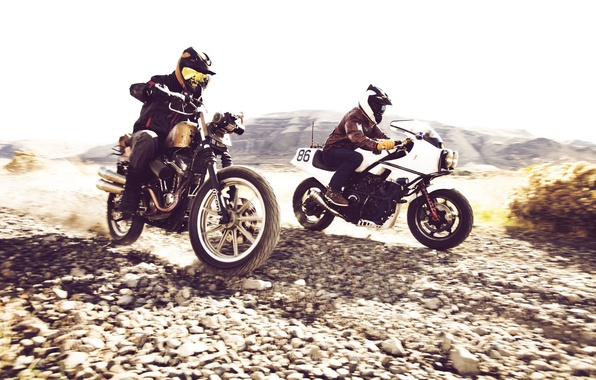 Picture road, motorcycles, race, speed