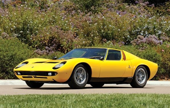 Picture auto, Lamborghini, 1969, yellow, classic, legend, Miura P400 S
