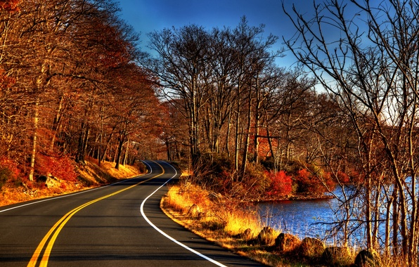 Photo Wallpaper River Road Leaves Fall Water Trees