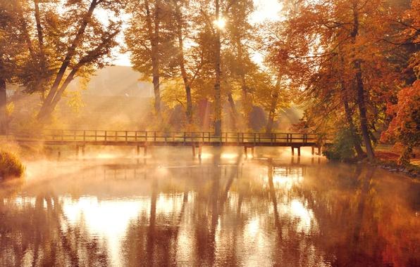 Picture autumn, leaves, water, the sun, light, trees, bridge, nature, lake, reflection, yellow, orange