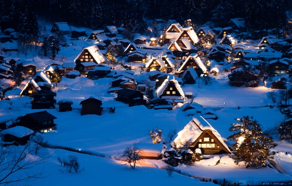 Picture winter, snow, landscape, night, nature, home