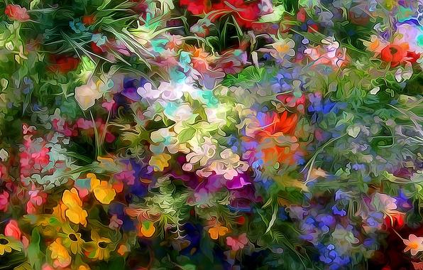 Picture line, flowers, pattern, garden, flowerbed