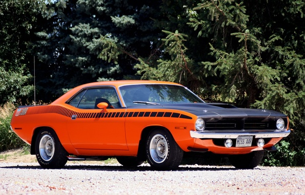 Picture muscle car, muscle car, 1970, Plymouth, where, plymouth, cuda
