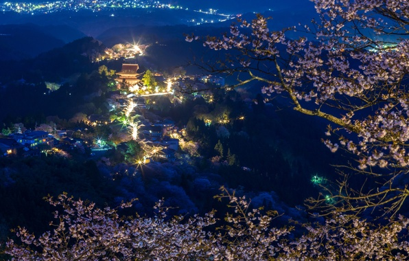Picture forest, mountains, night, branches, lights, home, Japan, Sakura, panorama
