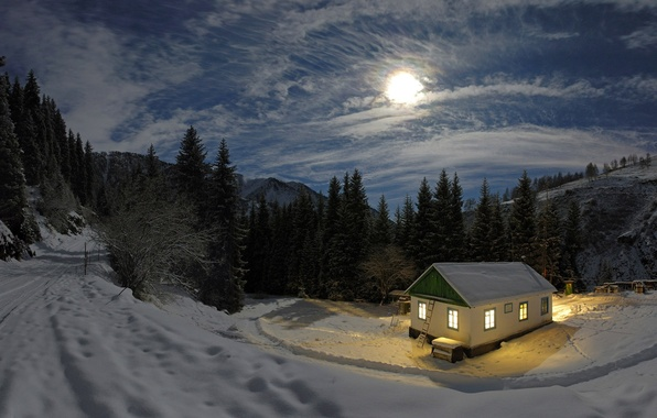 Picture winter, forest, light, snow, night, the moon, house
