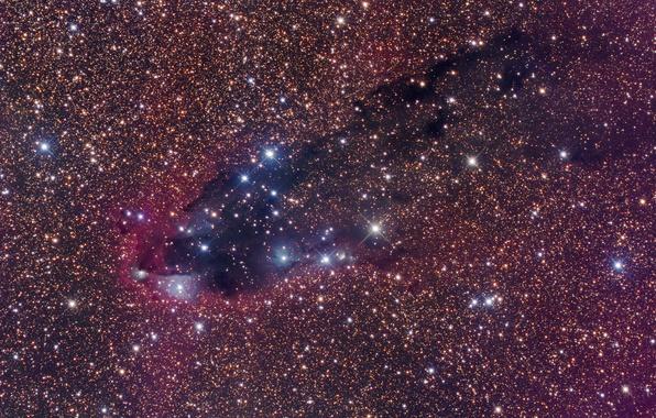 Picture space, Scorpio, dark nebula, star formation, star formation, Scorpius, dark nebula