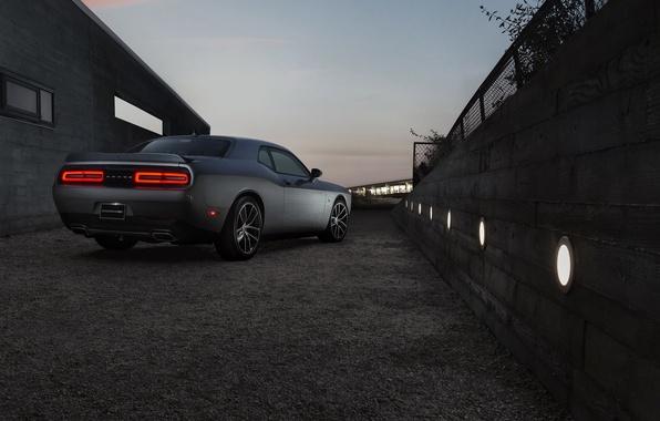 Picture the evening, Dodge, Challenger, Dodge, 392, Challenger, HEMI, Shaker, 2015, Scat Pack
