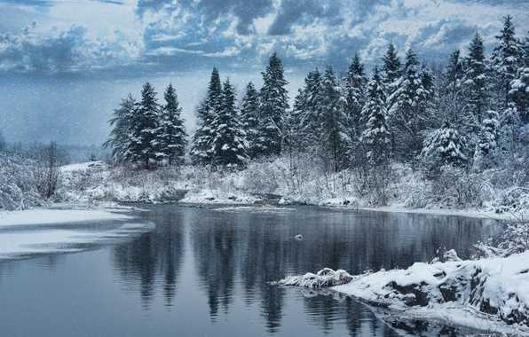 Picture winter, forest, snow, trees, nature, lake