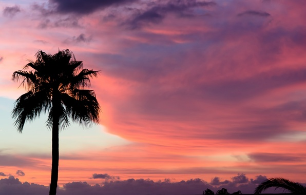 Picture the sky, clouds, sunset, Palma, pink, paint, Sunset, Tenerife, Tenerife