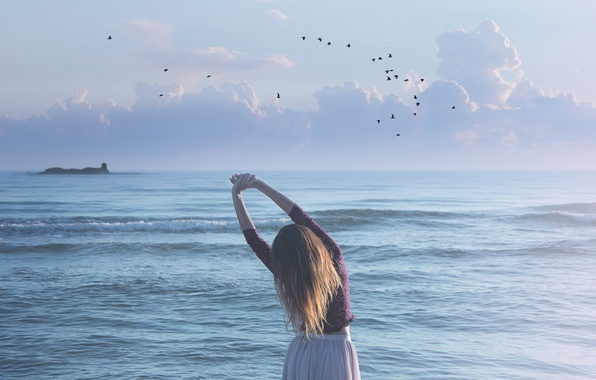 Picture sea, wave, girl, birds, skirt