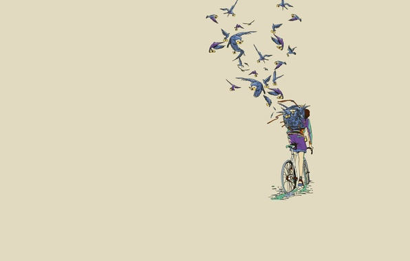 Picture bike, minimalism, pigeons, the postman, Art, letters, messages