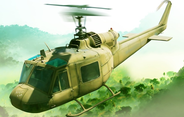 Photo wallpaper figure, helicopter, American, multipurpose, Bell, UH-1, Iroquois, Mohawk, Huey, Hog