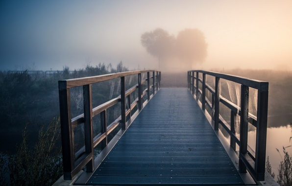 Picture bridge, fog, river, morning