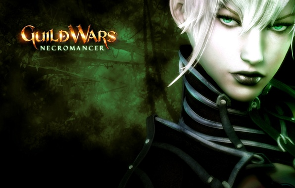 Photo wallpaper Necromancer, Guild Wars, MMO