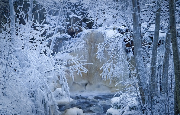 Picture winter, frost, forest, snow, trees, stream, river, Sweden