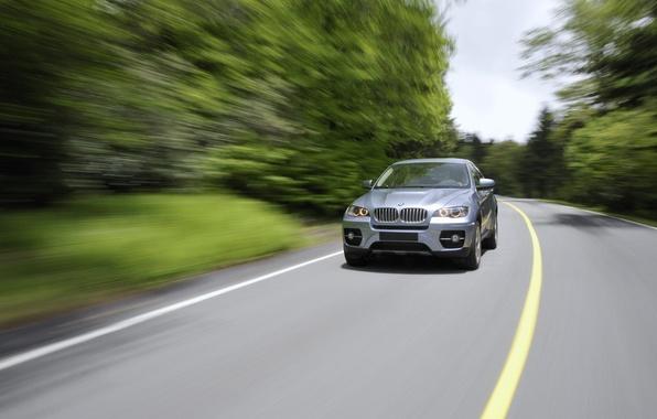 Picture road, machine, trees, bmw, BMW, road, auto, trees