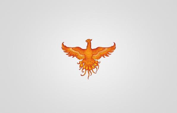 Picture bird, minimalism, light background, red, Phoenix, phoenix, fenix