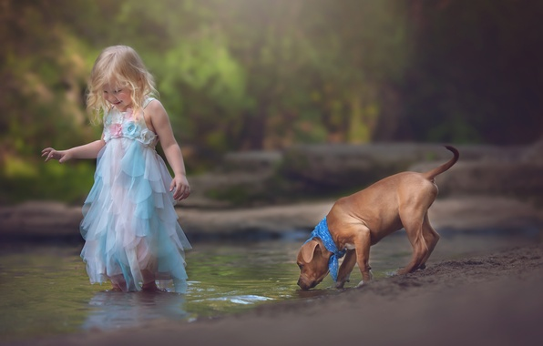 Picture stream, mood, dog, girl, puppy, friends