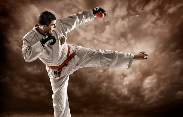 Picture action, Fighter, composition