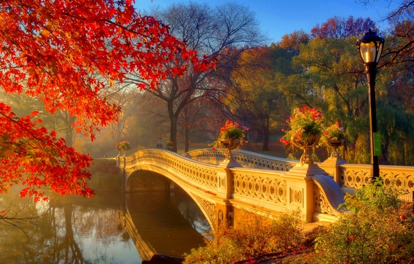 Picture autumn, the sun, trees, flowers, bridge, fog, Park, morning, lights, river