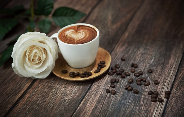 Picture flower, foam, table, rose, coffee, mug, drink, heart, white rose