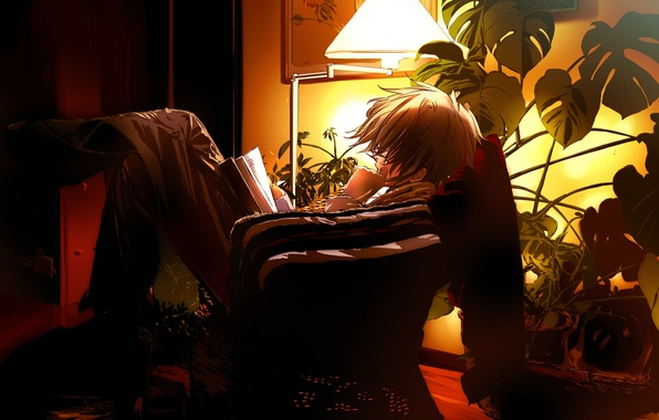 Picture the evening, anime, book
