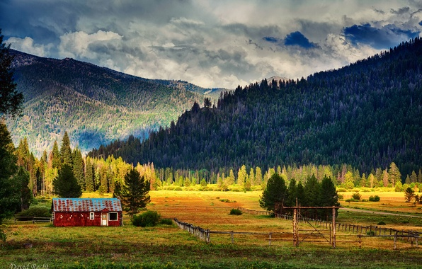 Picture field, forest, the sky, clouds, light, mountains, house, ate