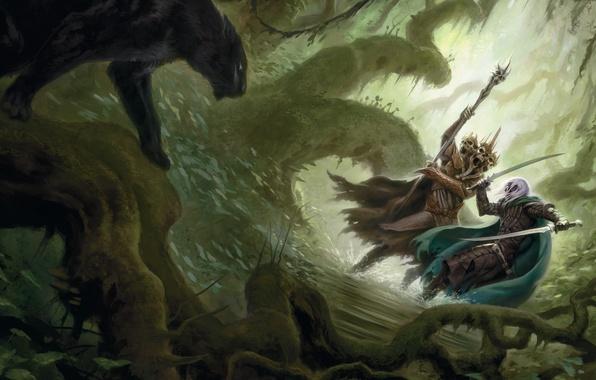 Picture forest, water, weapons, elf, thicket, Panther, art, staff, head, battle, drow, leach, dark elf, Robert …