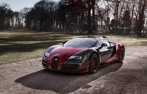 Picture Bugatti, Veyron, Bugatti, Veyron, Grand Sport, Vitesse, 2015, the Final
