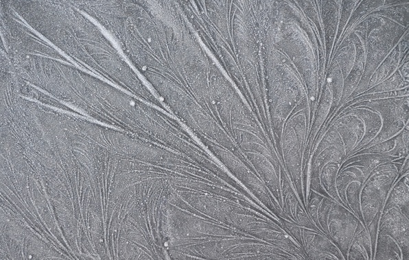 Picture frost, line, patterns, frost