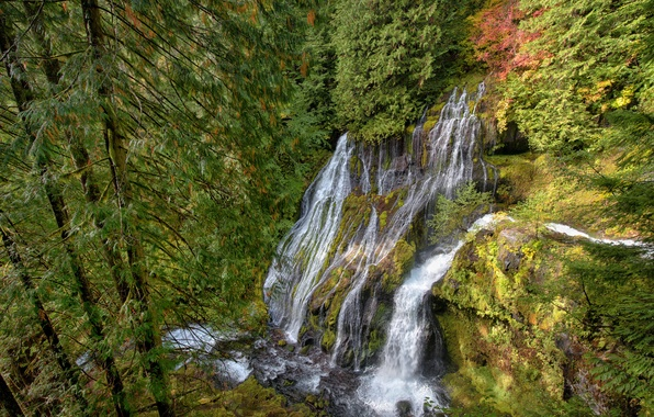 Picture autumn, forest, nature, rock, stones, waterfall