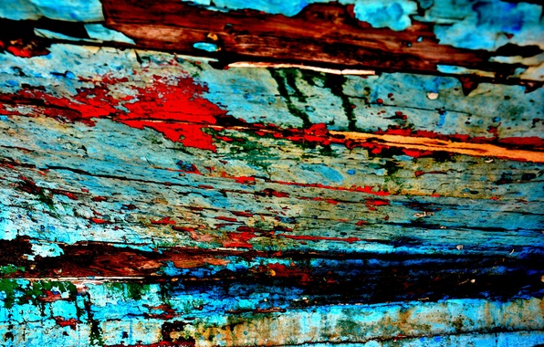 Picture tree, paint, color, texture