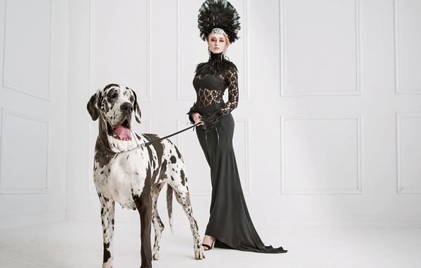 Picture decoration, pose, dog, feathers, makeup, figure, slim, dress, hairstyle, blonde, outfit, Dalmatian, in black, sexy