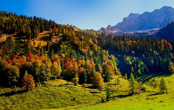 Picture autumn, the sky, trees, mountains, nature, hills, Austria, Karwendel, Tyrol