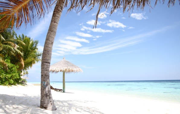 Picture stay, island, chaise, the Maldives, white sand, Seychelles